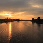 Mannheim river view
