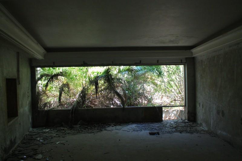 Panoramico overgrown
