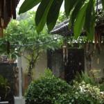 Strong rain in Bali