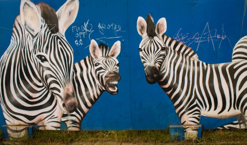 Prague streetart, Argentinská, zebra