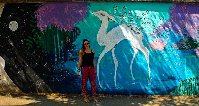 Mostar, street art, railway station, bambi