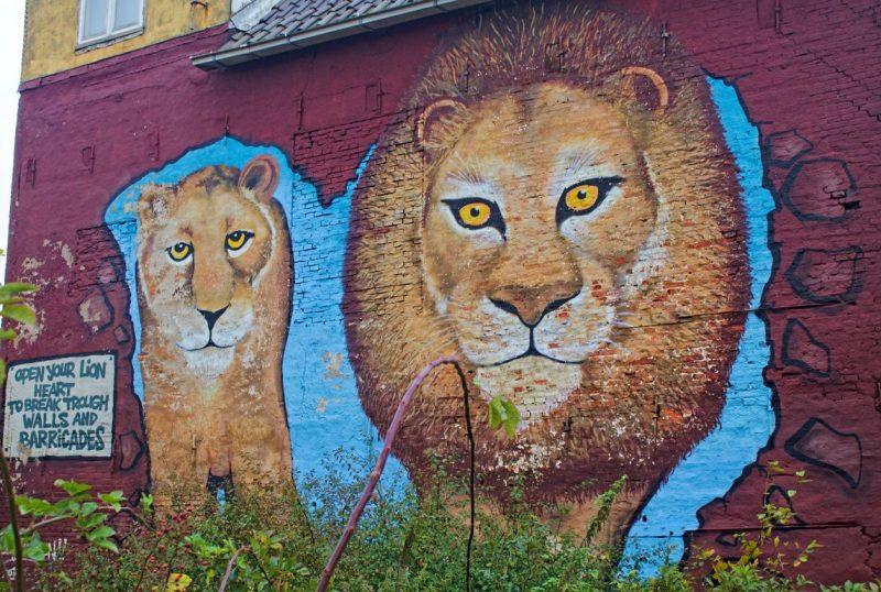 Two Lions, Noordvliet, Leeuwarden