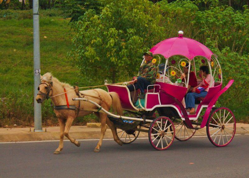 Riding a fairy tale carriage in Dalat and feeling like a princess